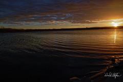 Cherry Creek Reservoir At Sunset (dcstep) Tags: dsc0188dxo sonya7riii fe2470mmf28gm cherrycreekstatepark colorado usa aurora allrightsreserved copyright2017davidcstephens dxophotolab uncompressed reservoir sunset cherrycreekreservoir lake handheld sunstar sunflare lensflare captureone