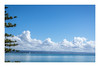 92/100: Room with a view... (judi may) Tags: 100xthe2017edition 100x2017 image92100 napier newzealand cloud sky water ocean blue roomwithaview tree canon7d