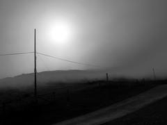 Bajo la niebla (no sabemos cómo llamarnos) Tags: niebla fog brouillard paisaje blancoynegro blackandwhite noiretblanc monochrome monocromático montaña mountain montagne