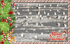 White Christmas 白色聖誕 (GeorgeTsai 168) Tags: wildlife saltpond merrychristmas happynewyear holiday whitechristmas gull 聖誕快樂
