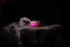 Red Tea (SmittyImagingLtd) Tags: dry ice dryice smoke science experiment color