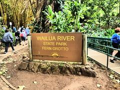 Wailua River State Park - Fern Grotto (3) (pensivelaw1) Tags: hawaii kauai wailuariverstatepark ferngrotto