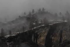 alberi e nebbie (66Colpi) Tags: nebbia sandomenico varzo ossola valcairasca neve rocce atmosfera
