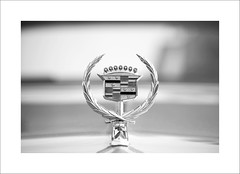 Cadillac (DJ Wolfman) Tags: cadillac emblem cars details vintage classiccars blackandwhite bw olympus olympusomd em1markii micro43 zuiko 12100mmf4zuiko zd