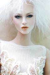 HAPPY NEW YEAR 2018 (V. JHON DOLL) Tags: vjhon doll fashion bjd 16 beading couture mesh smoky