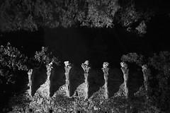 L1018617 (Daniele Pisani) Tags: resti rovine mura brunelleschi lastraasigna notte night firenze toscana italia