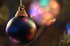 1514585761177 (martinasalvatori1) Tags: bokeh christmas lightsandbokeh ball christmasball christmas2017 2017 blue colors christmastree onceuponadecember december dicembre italy ms canon 700d