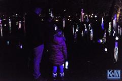 Winterlight in Schiedam (anat kroon) Tags: schiedam licht lights netherlands nederland nikond810 kroonenvanmaanenfotografie anatkroon winterlicht art kunst arte music vuur fire julianapark