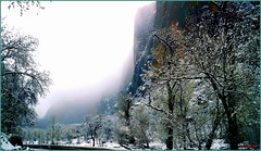 Beauty Overwhelming (Antonia Quest Photography/Larry Moore--Thanks) Tags: zionnationalpark winter travel snow ice landscape joy plan photo utah visit