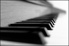 Black in a sea of white (G. Postlethwaite esq.) Tags: bw dof derby beyondbokeh black blackandwhite bokeh cheznous depthoffield keyboard keys monochrome musicalinstrument photoborder piano selectivefocus strillers white