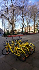 #biciclette #bycicles (Luciana.Luciana) Tags: biciclette bycicles