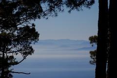 Africa, seen from Europa (José Rambaud) Tags: rif rifrange marruecos morocco maroc africa straitofgibraltar estrechodegibraltar europa spain anda andalucía sierrabermeja losreales estepona malaga airelibre outdoor