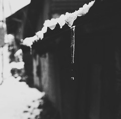 | Snowy Rooftop | #flickr #nikorr #nikond7000 #monochrome #snowfall #snowyroof #laketsongmo #northsikkim #november #mountains #northeastindia #himalaya (S u m a n G o s w a m i) Tags: flickr nikorr nikond7000 monochrome snowfall snowyroof laketsongmo northsikkim november mountains northeastindia himalaya