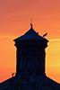 Ya estan aquíiiii 🐥🐥 (pascual 53) Tags: regresodelascigueñas alfaro canon 70200mm 7d torre ocaso