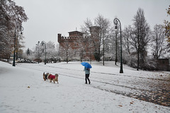 In un bianco parco - In a white park. (sinetempore) Tags: inunbiancoparco inawhitepark torino turin street neve snow uomo man cani dogs parcodelvalentino castellodelvalentino castellomedievale medievalcastle