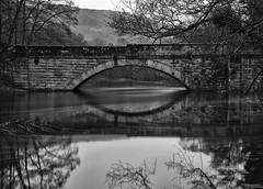 New Bridge (l4ts) Tags: landscape derbyshire peakdistrict darkpeak derwentvalley calver riverderwent newbridge longexposure 10stopfilter blackwhite monochrome trees reflections appickoftheweek