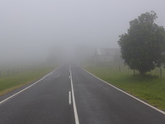 After the storm (tanetahi) Tags: landscape pastoral fog lowcloud mist road rural queensland binnaburraroad beechmont plateau tanetahi