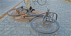 "Dumped Bicycle (Hindrik S) Tags: bike bicycle fyts fiets rad fahrrad velo damaged street straat strjitte vehicle wreck wrak wheel tsjil wiel nijstêd nieuwestad 2018 lost sonyphotographing sony sonyalpha ""sony 1650mm f28 dt ssm"" sony1650mmf28dtssm sal1650 strasenfotografie strase"