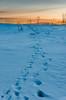 Winter Blues. (Kjell75) Tags: vardø varanger norway wildvaranger ngc natgeo pentaxart pentax ricoh winter cold bbc nrkfinnmark northernnorway visitvardø visitnorway discovery