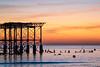 West Pier (Explored) (susie2778) Tags: olympus omdem1mkii olympusm12100mmf40 westpier sunset brighton wreckage