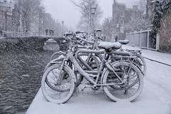 Winter storm hits Amsterdam with snow (B℮n) Tags: bike snow covered bikes bicycle holland netherlands canals winter cold wester church street anne dutch people scooter gezellig cafés snowy snowfall atmosphere colorful walk walking cozy light corner water canal weather cool sunset file celcius mokum pakhuis grachtengordel unesco world heritage sled sleding slee seagull nowandthen meeuw seagulls meeuwen bycicle 1°c sun shadows sneeuw brug slippery glad flakes handheld wind code rood oudezijdsvoorburgwal walletjes redlight amsterdam oudekennissteeg 50faves topf50 100faves topf100