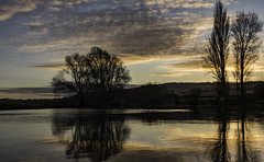 Down by the river (cliveg004) Tags: riveravon eckington worcestershire water river sunrise silhouettes trees reflections clouds hill fields nikon d5200