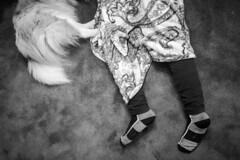 DSCF6693.jpg (DWO630) Tags: bw black blackandwhite compactcamera fuji fujifilm monochrome primelens richmond rva seriouscompacts va virginia white xtrans x100s