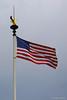 Flag (jipebiker) Tags: cimetière américain tombe croix 2èmeguerremondiale tomb 2ndworldwar drapeau flag usa americancemetery american cemetery cimetièreaméricain