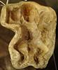 molde de mono ceramica Maya exposicion antiguo Colegio de la Compañia de Jesus Antigua Guatemala 03 (Rafael Gomez - http://micamara.es) Tags: molde de mono ceramica maya exposicion antiguo colegio la compañia jesus antigua guatemala santiago los caballeros