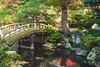 Japan (mripp) Tags: art vintage retro color colors japan kyoto park garden leica m10 summicron 50mm