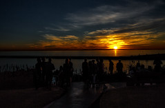 A Gathering at Sunset (Sunset Dogs) Tags: