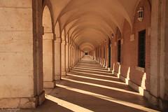 Hacia el infinito... (cienfuegos84) Tags: aranjuez punto fuga luz light