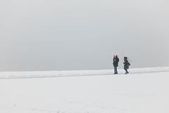 White as snow… (Oleg Magni) Tags: snow snowflake snowing white winter winterwonderland lugano switzerland ticino lake neve nature outdoors landscape lago natura svizzera