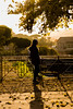 sunset beauty (Robeevans) Tags: rome roma roman italy italia holiday travel travelling canon eos 500d rebel t1i colour sunset yellow tree people model shadow contrast light nautre autumn europe eu europa