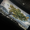 DILIDEC2017_6053 (cmiked) Tags: 2017 dilo dilo1217 dilodec17 wintersolstice december texas waco unitedstates us 365355 proj365