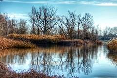 Perfiles del Duero. (Alberto Ramos C.) Tags: zamora castillayleón españa spain blue landscape river nature winter sky europe