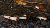 Scarlet Elfcup (Sarcoscypha austriaca) (BiteYourBum.Com Photography) Tags: dawnandjim dawnjim biteyourbum biteyourbumcom copyright©2017biteyourbumcom copyright©biteyourbumcom allrightsreserved canoneos7d canonefs60mmf28macrousm sigma50500mmf4563dgoshsm canonef1740mmf4lusm apple imac5k lightroom5 ipadair appleipadair camranger zerenestacker focusstacking polaroidautofocusdgmacroextensiontubes manfrotto055cxpro3tripod manfrotto804rc2pantilthead loweproprorunner350aw uk unitedkingdom gb greatbritain england westsussex arundel southdownsnationalpark southdowns scarlet elfcup sarcoscypha austriaca scarletelfcup sarcoscyphaaustriaca
