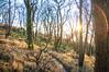 20171228-_DSC6246 (DJMads) Tags: cold frosty winter bryneuryn snowdonia carneddau a55 northwales wales welsh unitedkingdom uk osian friends photoshoot light ambient atmospheric hdr lightroom flickr dramatic sun sunlight