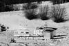 Camp d'hiver (ZUHMHA) Tags: bulgarie bulgaria hiver winter buzludja neige snow campagne campain arbre tree paysage landscape horizon maison house architecture line lignes courbes curve caravane caravan camp campement