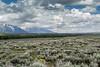 Yellowstone (paulius.vengialis) Tags: usa lake mountains art green nature saltlakecity movement longexposure