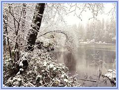 Winter at Lost Lagoon (FernShade) Tags: vancouver stanleypark lostlagoon snow snowscene winterscenery scenic lostlagoonsnow stanleyparksnow nature outdoor