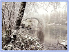 Winter at Lost Lagoon (FernShade) Tags: vancouver stanleypark lostlagoon snow snowscene winterscenery scenic lostlagoonsnow stanleyparksnow nature outdoor