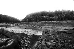 Oregon Explored (C. Campbell) Tags: oregon oregonexplored eugene nikon d600 highway58 dexter lake reserve milkyway galaxy longexposure