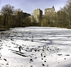 Ice Covered Pond (Joe Josephs: 3,166,284 views - thank you) Tags: centralpark landscape landscapephotography nyc newyorkcity travelphotography urbanexloration outdoors parks peaceful quiet tranquil urbanparks ice snow winter cold coldweather icecovered lake pond icylake icypond