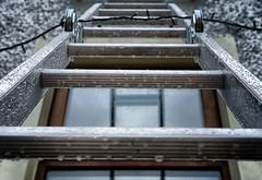 Ladders and Rain (crewlie) Tags: activeassignmentweekly bestofweek1 bestofweek2 bestofweek3 bestofweek4 bestofweek5