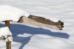 Winter (III) (dididumm) Tags: winter sunshine shadow snow fence post cold kalt kälte pfosten zaun schnee schatten sonnenschein