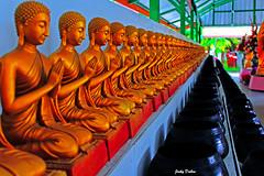 a line of Buddha… (Jinky Dabon) Tags: canoneos1200d buddhism buddhist buddha religion worship easternreligon