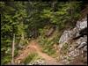 17080118901.jpg (Rooster on Trails) Tags: 2017082402 color book 43 leicam10 fotoz zeisscbiogont2835mm flickr posts