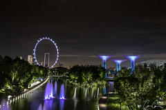 Silver (Zoom In, Click On, Check Out) Tags: singapore city night twiglight marina marinabay dark light lights long exposure super trees tree supertree supertrees garden by bay gardensbythebay gardens mega megatree