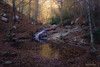 Otoño en nuestros bosques (Oriol Quirós) Tags: otoño autumn paisaje landscape catalunya catalonia spain españa montseny bosque forest tree water agua cascada fall nature naturaleza largaexposicion longexpo longexposure